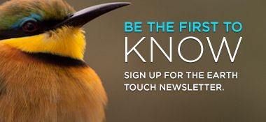 Sign Up for the Earth Touch Newsletter