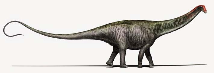 Brontosaurus 2 2015 04 07