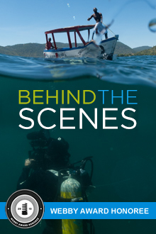 Wildlife Documentaries: Behind the Scenes