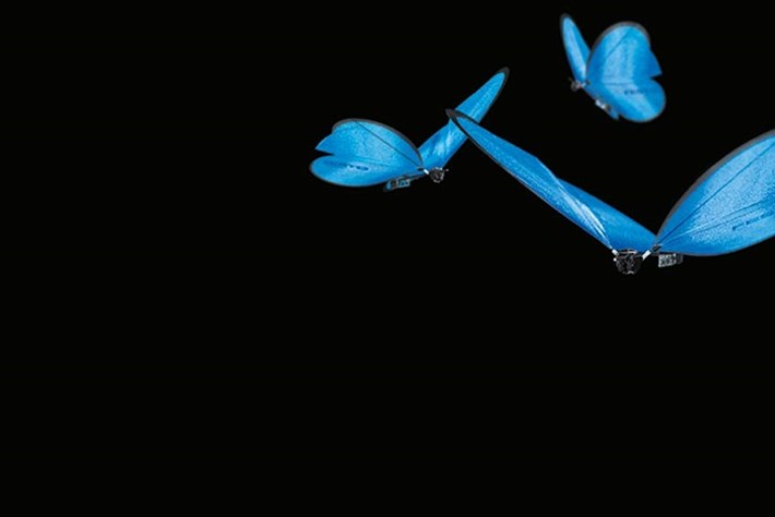 Watch: Are these robot butterflies the drones of the future?