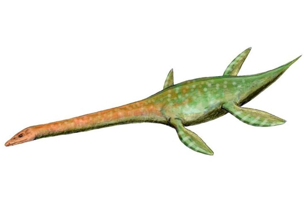 Attenborosaurus conybeari