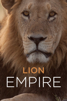 Lion Empire
