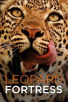 Leopard Fortress