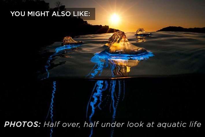 Half Over Half Under Related Content 2015 07 14