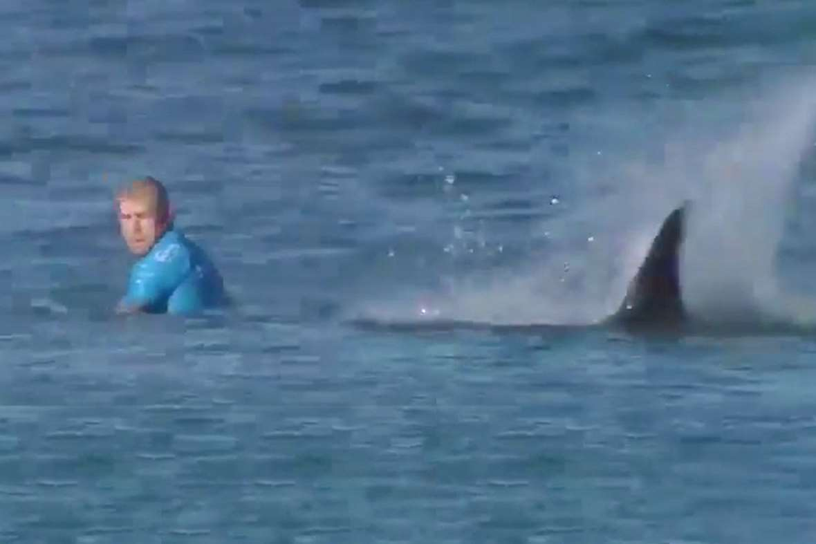Australian surfer Mick Fanning fights off two sharks while competing ...