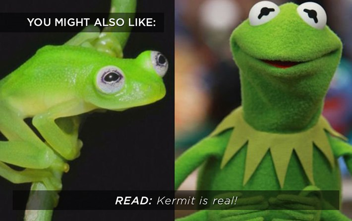Kermit is real_related_2015_10_01