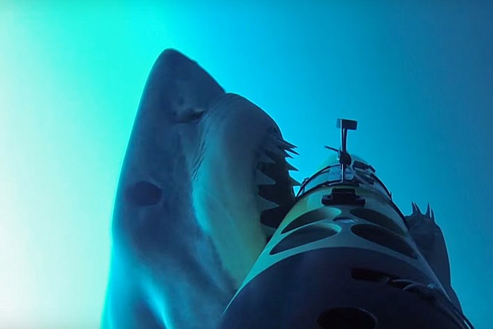 Shark-tracking robot gets chomped by great white, lives to tell the tale