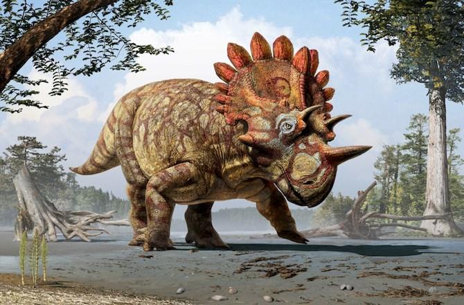 Regaliceratops Juliu Csotonyi 2015 12 29