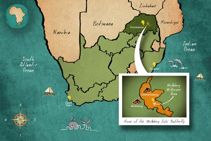 2014 02 24 Wolkberg Zulu Butterfly Distribution Map