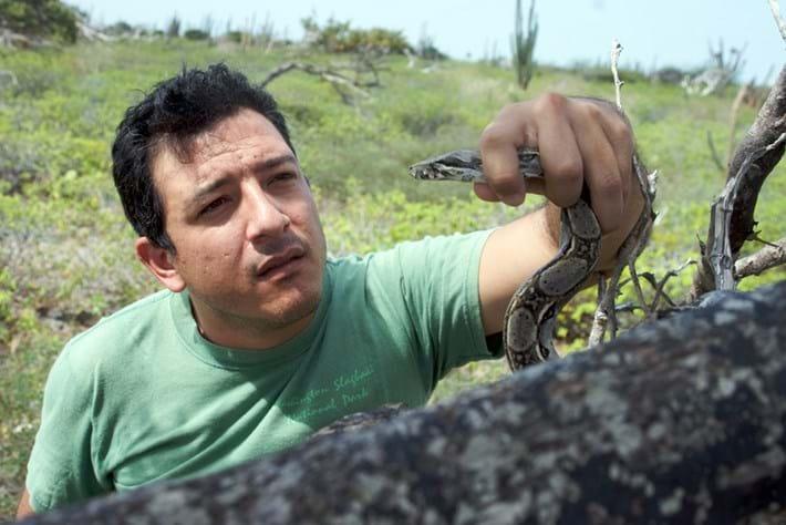 Diego Marquez Boa 27 02 2014