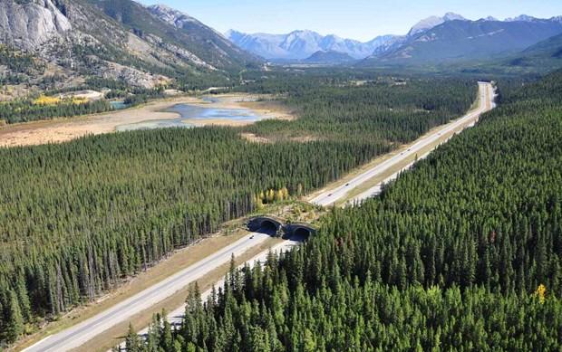 2014 03 10 Bears Crossing Overpass Aerial