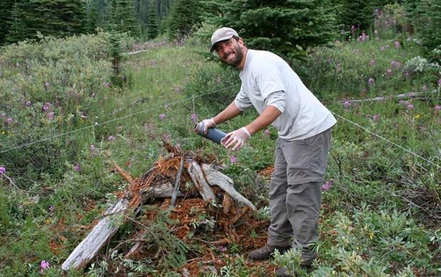 2014 03 10 Mike Sawaya Bear Research