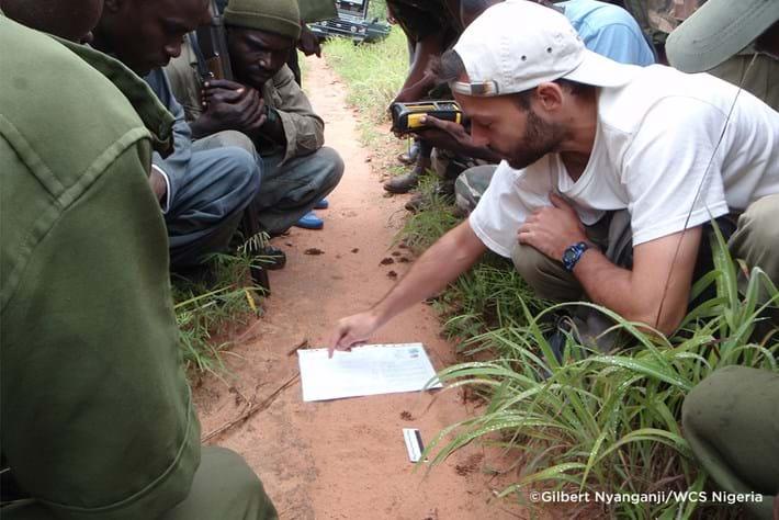 West African Lion Survey