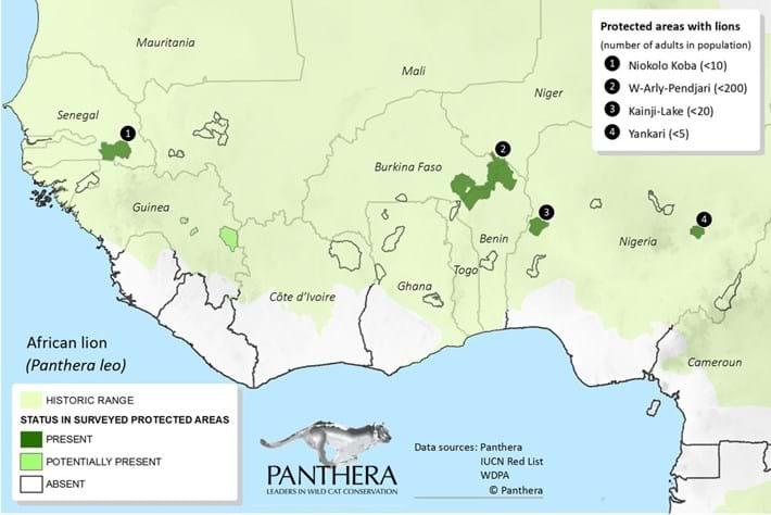 West African Lion Survey Map (1)
