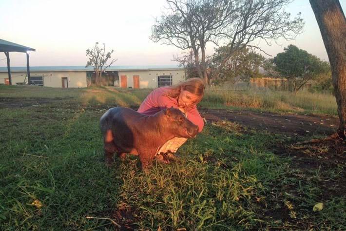 Baby Hippo Karen Trendler 2016 05 19