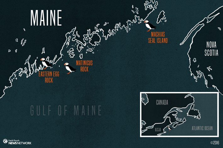 Gulf Of Maine Map 2016 08 26