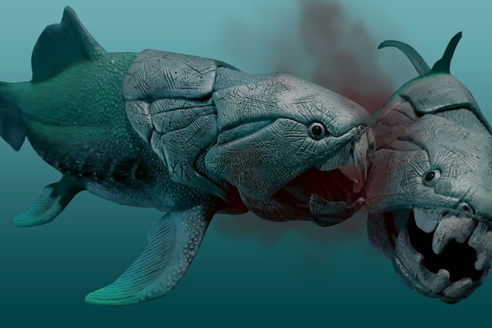 The nasty eating habits of prehistory's meanest fish