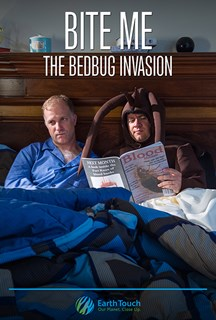 Bite Me – The Bed Bug Invasion