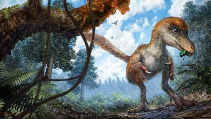 coelurosaur-dinosaur_amber_2016_12_08.jpg