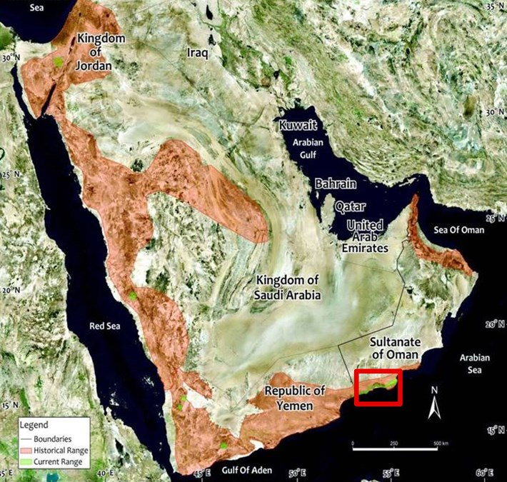 arabian-leopard-map_2016_12_22.jpg