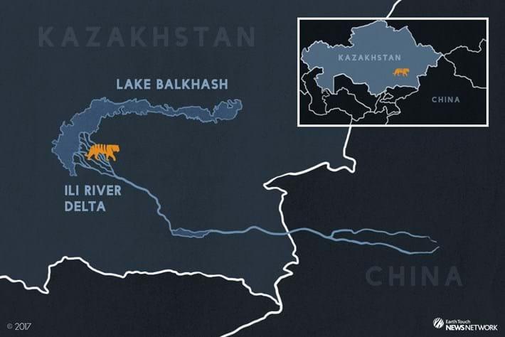 Kazakhstan-Tigers-Map_2017_01_24.jpg