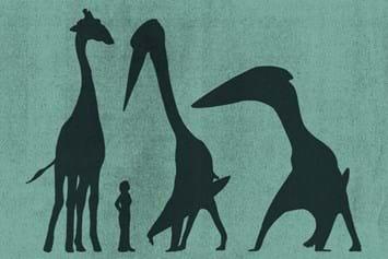Pterosaurs_Scale_2017_01_30.jpg