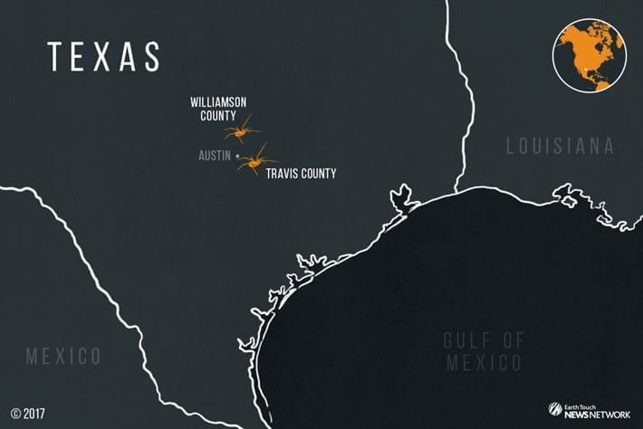 Texella-Spider-Map_2.jpg