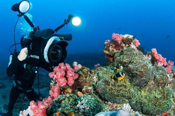 coral_reef_world_oceans_day_2017-06-08.jpg