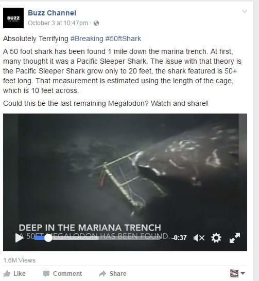 megalodon-hoax_2017_07_18.jpg