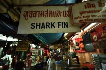 shark fins market_2017_09_21.jpg