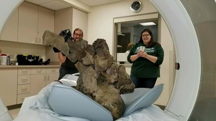 2017_09_29_Morhardt_Triceratops_Scan.jpg