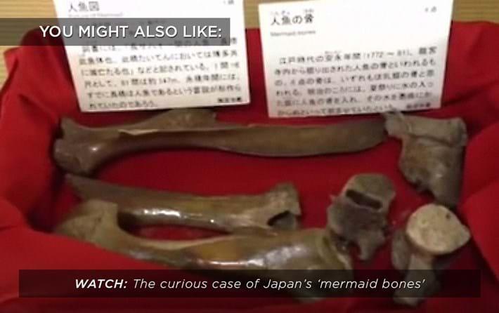 japan-mermaid-bones_related_29_11_17.jpg