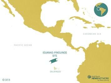 Iguanas-Pinguinos_Skate-Eggs-Map_2018_02_08.jpg