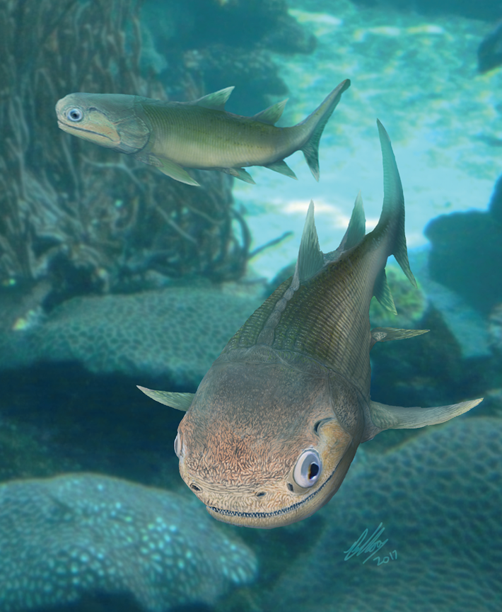 ancient-fish-Ligulalepis_2018-05-31.png