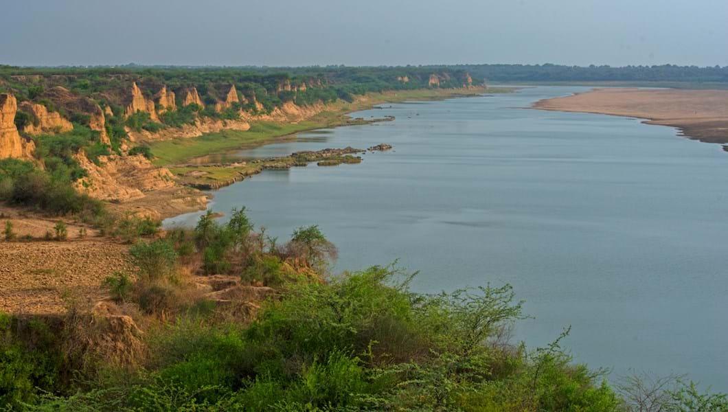 india-chambal-river_2018-06-11.jpg