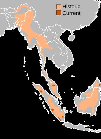 Sumatran-rhino-distribution-map_2019-06-04.png