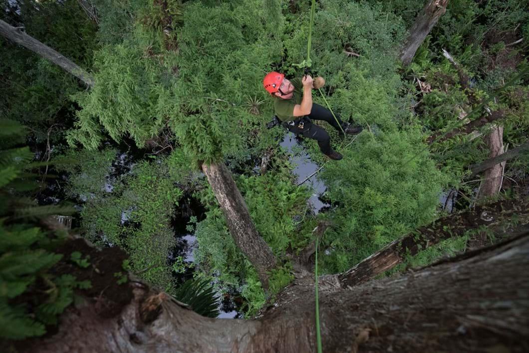 Mac-Stone-climbing-tree_2019-07-24.jpg