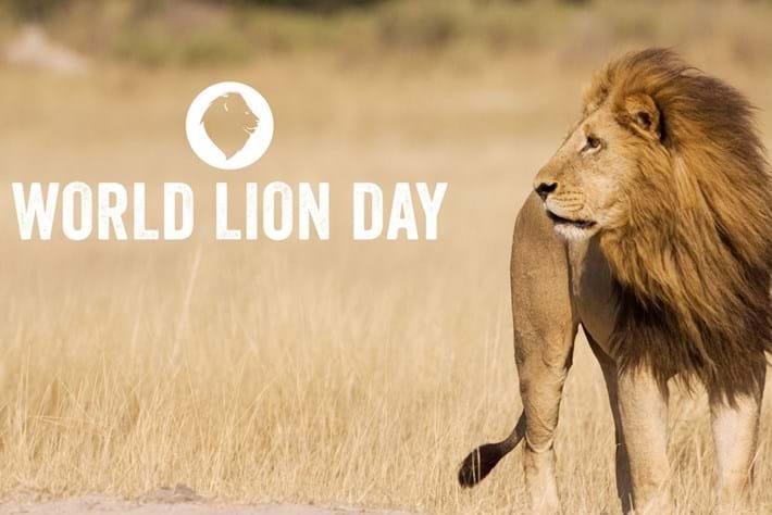 world-lion-day_page_edit_2018-08-09.jpg