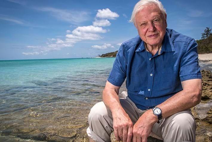 David_Attenborough_at_Great_Barrier_Reef_2019-11-05.jpg