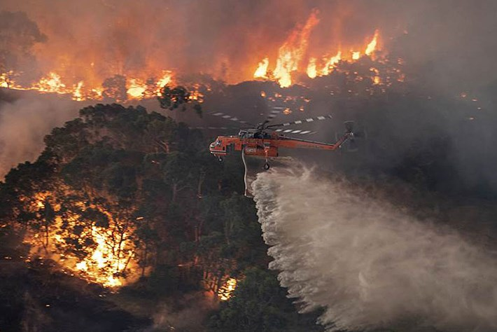 Australia-wildfires_page_2020-01-20.jpg