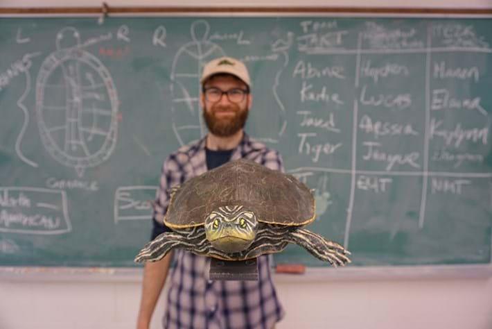 3D-printed-turtle_2020-02-12.jpg