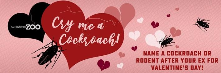 valentines-cockroach_2020-02-13.jpg