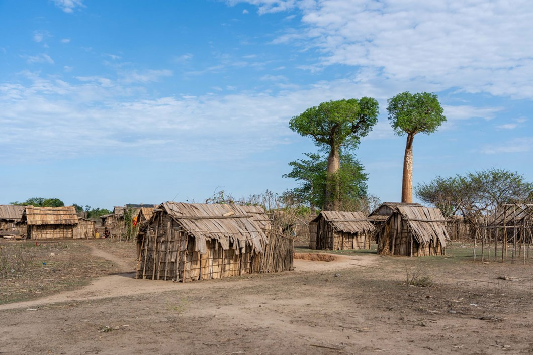 village-Menabe-Antimena-Protected-Area-madagascar_2020-04-02.jpg