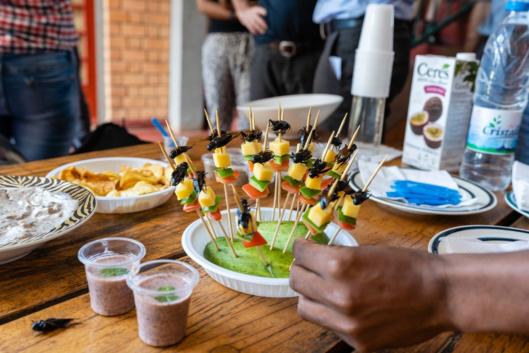 fried-cricket-appetisers-madagascar_2020-04-02.jpg