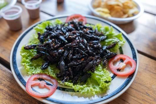 fried-crickets-madagascar_2020-04-02.jpg