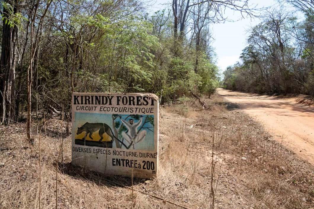 entrance-Kirindy-Forest-madagascar_2020-04-02.jpg