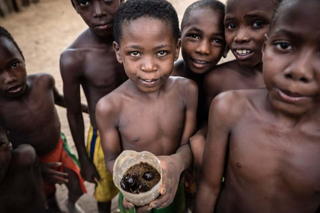 Malagasy-children-rhino-beetle-hunt_2020-04-02.jpg