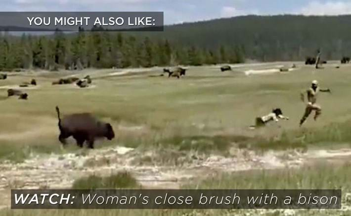 woman-charged-bison_related_content_2020-08-18.jpg