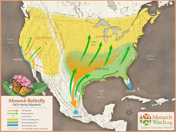 monarch-butterflies-map_2020-09-30.jpg
