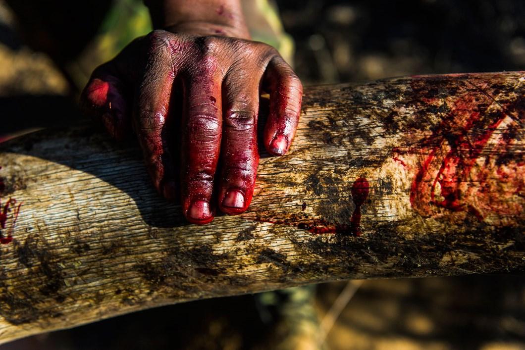 bloody-hand-ivory_2020-11-29.jpg
